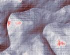 landkreis dahme spreewald spreewald raddusch